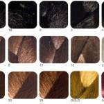 couleur cheveux nuancier