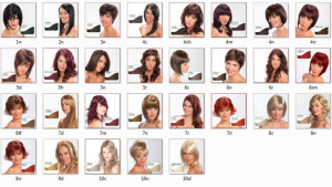 Modèle coloration cheveux biologique