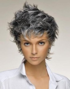 Exemple coloration cheveux en gris