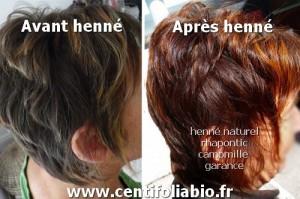 Idée coloration cheveux henné bio