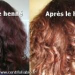 coloration cheveux blancs henne