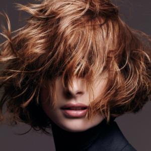 Tendance : couleur cheveux jean louis david