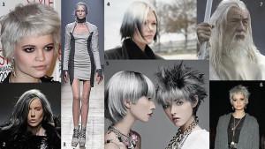 Idée coloration cheveux gris