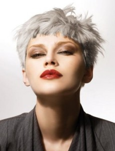 Quelle coloration cheveux gris